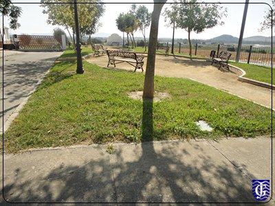 Jard n plaza de trinidad del el torno jerezsiempre for Jardin plaza