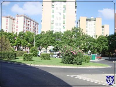 Jardin plaza kiwi jerezsiempre monumentos historia for Jardin plaza