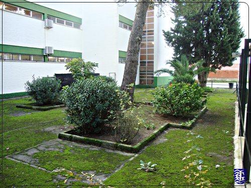 Los jardines del colegio marzo 2015 for Jardin des zibans 2015